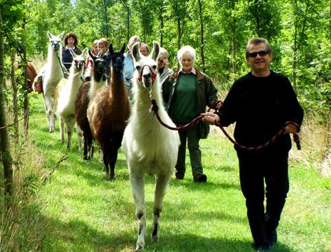 catanger-llama-trekking1